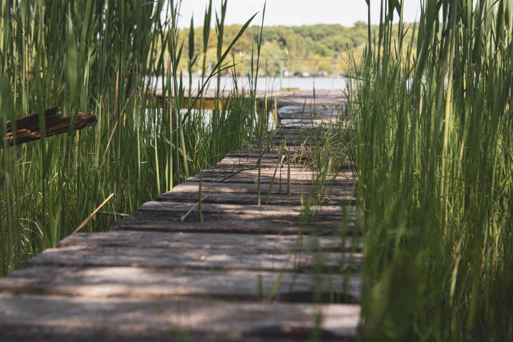 Kilátás a Széki-tóra
